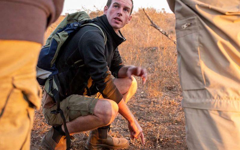 conservation internship south africa